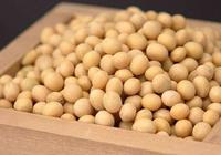 截止11月30日我國大豆主產區累計收購大豆126萬噸