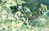 插畫:日本藝術家Yu Hoshino的夏日風景水彩畫