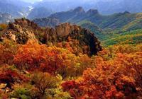 河北的第十五個國家森林公園的它,被稱為北方小黃山!