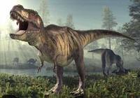 霸王龍真的是最強恐龍嗎?這4種恐龍或可殺死霸王龍