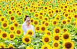 田間美女告訴你生活需要點綴,釋放壓力請接觸大自然