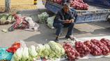 實拍農村大集10張圖,農民大哥說一萬多斤大白菜賺不了2000元