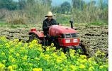 農民挖出一口水缸,發現大量寶物,專家600元收走,如今價值千萬