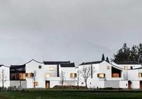 鄉村振興,房子就該這麼蓋,別人家的農村有那麼美嗎?