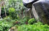 風景圖集:白鶴朝公園風景美圖