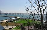 實拍大連星海公園優美的風景,天藍水清花開,快來海邊看看吧