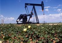 石油是如何形成的?石油是古生物化成的嗎?