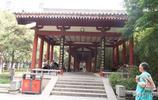 高新豐慶公園荷花已盛開,愛蓮的朋友們趁著天氣不熱快去欣賞遊玩