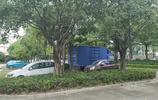 探訪東莞常平公園,亭臺樓閣,綠草如茵,適合散步