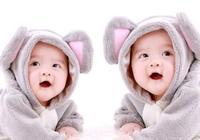 寶寶一歲多了,該學習了嗎?