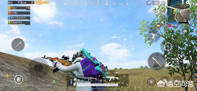 """《刺激戰場》出現了首款""""動物皮膚"""",被玩家吐槽稱是低配版火麒麟,你覺得好看嗎?"""