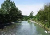 《探清水河》疑點重重,真情的情況可能是這樣的!