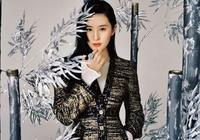 韓媒報道劉亦菲《木蘭》海報似宣美遭韓網友打臉