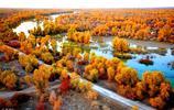 終於黃了!塔里木胡楊林,10月下旬開始,才是南疆秋色最美時段