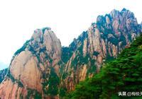 中國最神奇的一棵樹,800年保持同一種姿勢,武警24小時看守