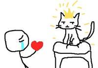 用手逗貓是養貓最大的忌諱?