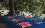 悠閒旅遊 老撾琅勃拉邦光西瀑布旅行遊記 碧藍色的潭水如夢如幻
