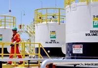巴西石油公司