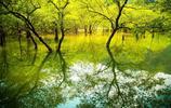 這個瀑布離杭州不到一個小時,在1400年前的北魏時期就聞名於世!