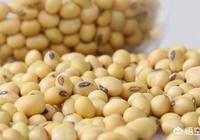 2019年種植大豆還會有種植補貼嗎?