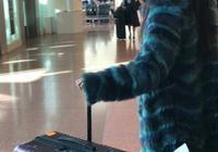 迪麗熱巴專注紫色行李箱!一模一樣,只有大小之分,可能是批發的