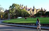 圖集:讓我們看看美麗的悉尼大學