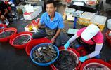 週末逛青島早市 新鮮大蝦27元一斤 蛤蜊10元2斤 梭子蟹行情看漲