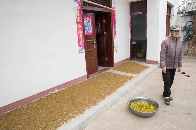 走進豫南一個深度貧困村,看看這裡村民生活是啥樣,村貌逐漸在變