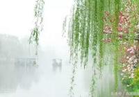 蓑笠山翁《微雨》