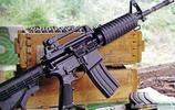 全球最著名的15把軍事步槍