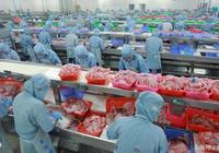 水產養殖中抗生素的應用