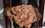 炒作!古玩市場這塊木頭4年前賣6萬一塊,如今卻只能賣60元一塊!