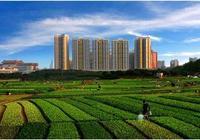 非農業戶口怎樣才能合法買到農村宅基地?