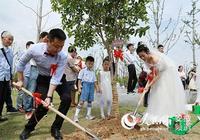 """寧國9對新人""""520""""舉辦集體婚禮"""