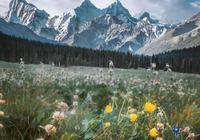 這是關於天山的熾烈禮讚,一睹神山腳下的曠世之美!