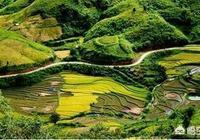 """農村常言""""靠山吃山,靠水吃水""""說的是什麼意思?"""