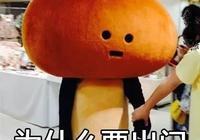 日本奇葩吉祥物滑子菇 頹廢萌佔領表情包!