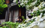 雲南有座深山是國家級景區,門票40元,去過的遊客形成兩個極端