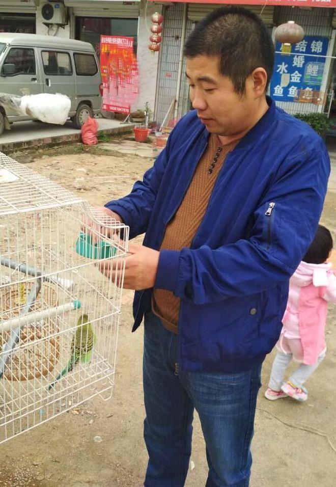 在鄉村,30元一隻的雲雀,你會買嗎