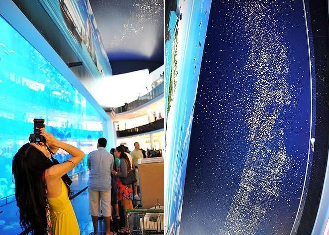 實拍世界最大的購物中心