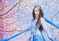 cos正片——秦風秀姐浩氣藍