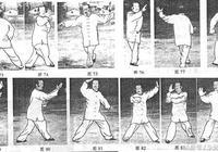 武當純陽拳九轉八步龍心掌(三)