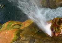"""考驗你的心理素質,不分男女換著裸泡!西藏的溫泉就是""""野""""!"""