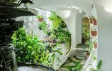 """印度這個公寓猶如""""自然洞穴"""",住在裡面感覺心靈都會被淨化"""