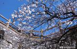美麗中國之呂梁山影像