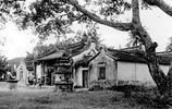 二十年代的印尼華人 華夏文化落地生根