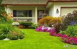 如果農村有這樣一個小院,給城市裡的別墅都不換,羨慕這樣的生活
