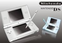 NDS銷量最高的第三方模擬料理遊戲,吸引了來自全球的成年玩家