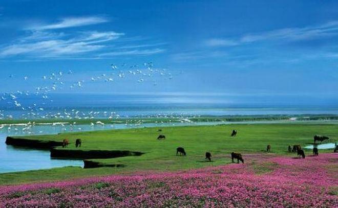 江西鄱陽湖