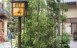 身為西安人,卻不知西安最美小鎮,有空就來看看,感受千年古韻